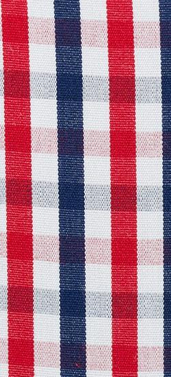 Blue & Red Shadow Check Custom Shirt
